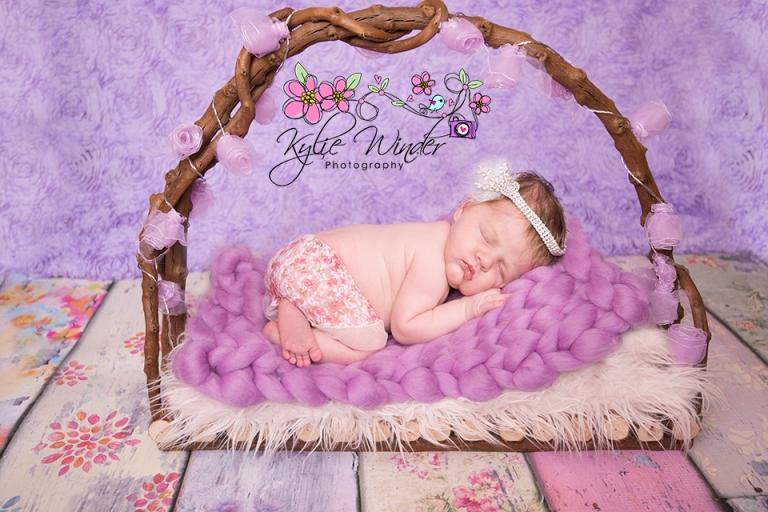 little-cutie-in-a-basket-fb