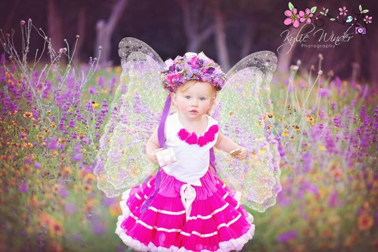 butterfly-2-fb