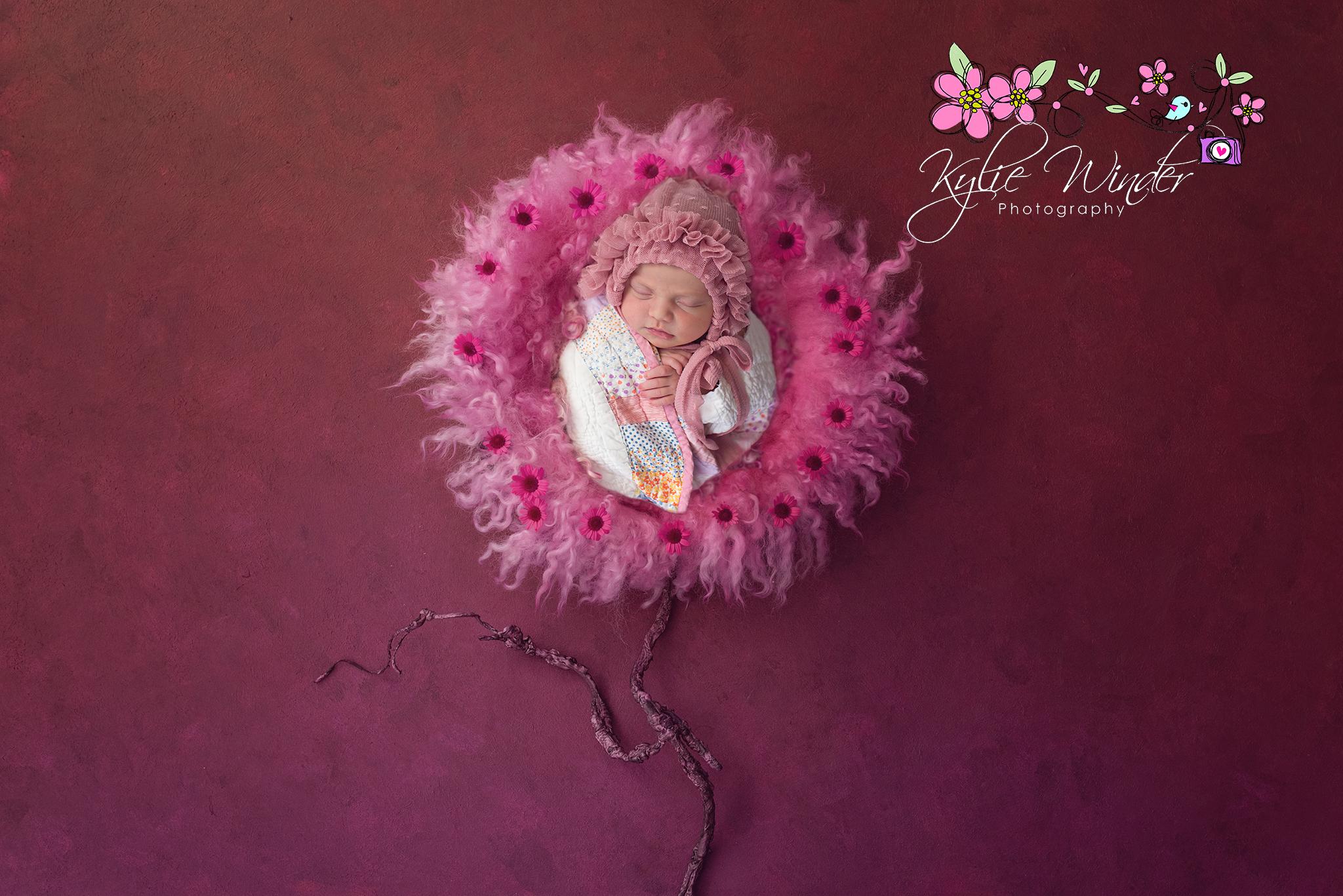 flower pinksf