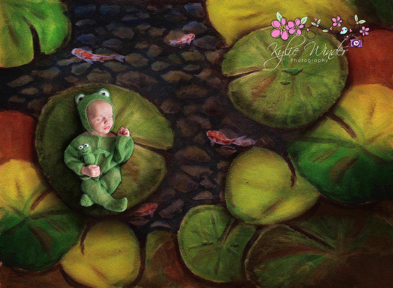 frog in pondf